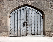 Puerta de madera en un palacio antiguo Imágenes de archivo libres de regalías