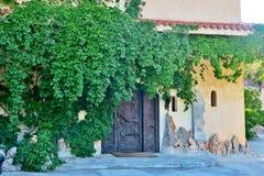Puerta de madera grande de un castillo viejo demasiado grande para su edad con una planta verde imagen de archivo