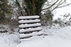 Puerta de madera nevada Foto de archivo libre de regalías