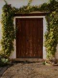 Puerta de madera rústica, rodeada subiendo las plantas color de rosa fotografía de archivo libre de regalías