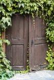 Puerta de madera vieja con la hiedra Fotos de archivo
