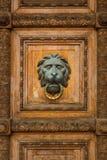 Puerta de madera vieja con la manija del león Foto de archivo libre de regalías