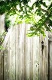 Puerta de madera vieja en el jardín Fondo del verano Imagen de archivo libre de regalías