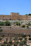 Puerta de oro, Jerusalén Fotos de archivo