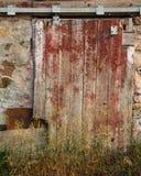Puerta de Texured Imagenes de archivo
