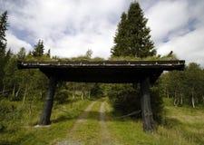 Puerta del bosque Imagen de archivo