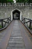 Puerta del castillo y pared de la roca Foto de archivo