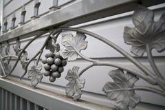 Puerta del hierro de la vid Fotos de archivo