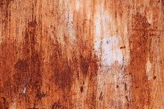 Puerta del metal en moho Fotografía de archivo libre de regalías