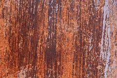 Puerta del metal en moho Foto de archivo libre de regalías