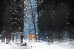 Puerta del misterio en el bosque imágenes de archivo libres de regalías