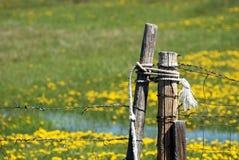 Puerta del rancho del alambre de púas Imagen de archivo libre de regalías