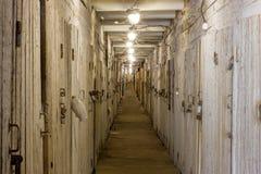 Puerta del sótano Foto de archivo libre de regalías