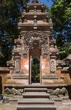 Puerta del templo Árbol extraño con las raíces gigantes entre la selva Imagen de archivo libre de regalías