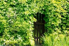 Puerta en el seto Imagen de archivo libre de regalías