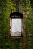 Puerta en una pared cubierta con el musgo Fotos de archivo libres de regalías