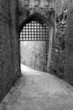 Puerta gótica blanco y negro imágenes de archivo libres de regalías
