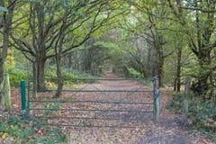 Puerta grande que lleva a través a un paseo del bosque en otoño fotografía de archivo libre de regalías
