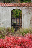 Puerta negra en una pared vieja Foto de archivo libre de regalías
