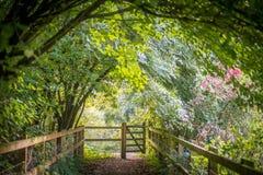 Puerta pública del sendero en el extremo del túnel del árbol fotos de archivo