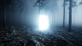 Puerta que brilla intensamente en portal de la luz del bosque de la noche de la niebla Mistic y concepto mágico Animación realist almacen de metraje de vídeo