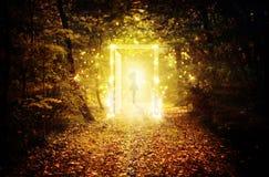 Puerta que brilla intensamente mágica en el bosque encantado imagen de archivo