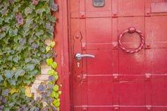 Puerta roja del vintage del metal con las hojas de la hiedra imagenes de archivo