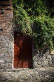 Puerta roja vieja rodeada por crecimiento excesivo, el ladrillo y la piedra Foto de archivo libre de regalías