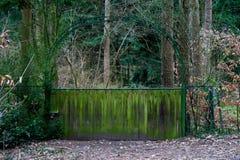 Puerta a un jardín secreto imagen de archivo