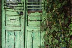 Puerta verde de madera con una cerradura Alrededor es mucho verdor Otoño temprano imagen de archivo libre de regalías