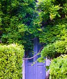 Puerta vieja demasiado grande para su edad ocultada foto de archivo