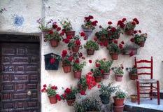 Puerta vieja y geranios rojos Imagenes de archivo