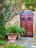 Puerta y esquina del vintage, plantas, ramas y cuento de hadas en Civita di Bagnoregio, ciudad en la provincia de Viterbo, Italia imagen de archivo libre de regalías