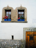 Puerta y ventanas Fotografía de archivo libre de regalías