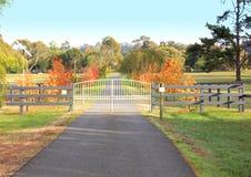 Puertas adornadas del hierro Fotos de archivo
