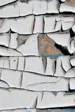 Puertas agrietadas de madera de pintura Imagen de archivo libre de regalías