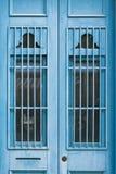 Puertas azules Fotografía de archivo libre de regalías