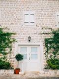 Puertas blancas viejas Textura de madera Foto de archivo