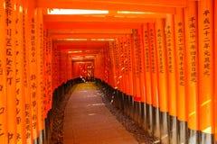 Puertas de Fushimi Inari Torii Imagen de archivo libre de regalías