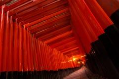 Puertas de Torii Imagen de archivo