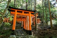 Puertas de Torii en la capilla de Fushimi Inari en Kyoto, Japón Fotografía de archivo libre de regalías