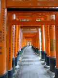 Puertas de Torii en la capilla de Fushimi Inari Taisha en Kyoto, Japón Fotografía de archivo libre de regalías