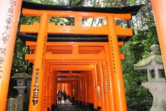 Puertas de Torii de Fushimi Inari-Taisha fotos de archivo libres de regalías