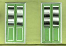 Puertas del obturador de la ventana del verde de cal Imagen de archivo