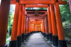 Puertas del taisha del inari de Fushimi fotografía de archivo