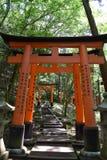 Puertas del torii de Japón del templo del Fox Fotografía de archivo