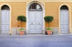 Puertas dobles de madera con las macetas Imágenes de archivo libres de regalías