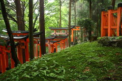 Puertas japonesas del torii Imágenes de archivo libres de regalías