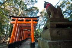 Puertas rojas con la estatua del zorro en Kyoto, Japón Foto de archivo libre de regalías