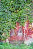Puertas rojas viejas foto de archivo